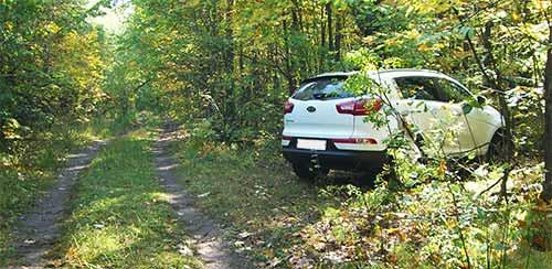 Парковка в лесу