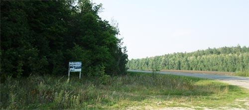 Дорога по направлению в Кузоватово