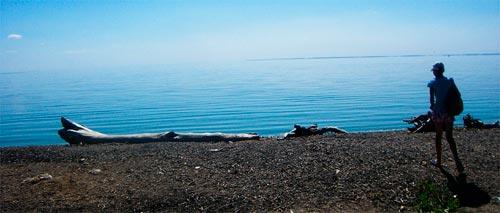Берег Волги, Ундоры, вода зацвела